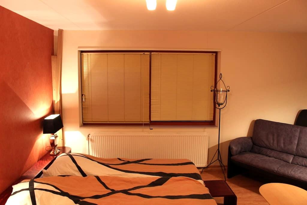 Nice room in house in Eindhoven - Eindhoven - Casa