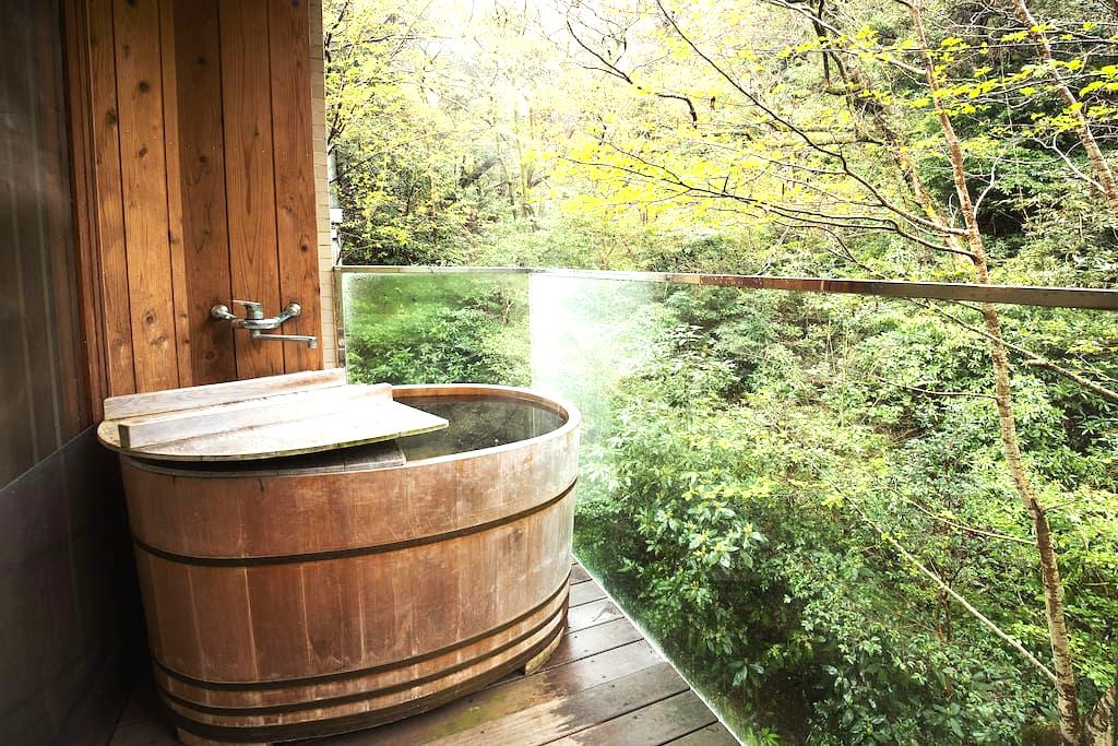 Hakone resort. Natural hot spring. - Hakone-machi