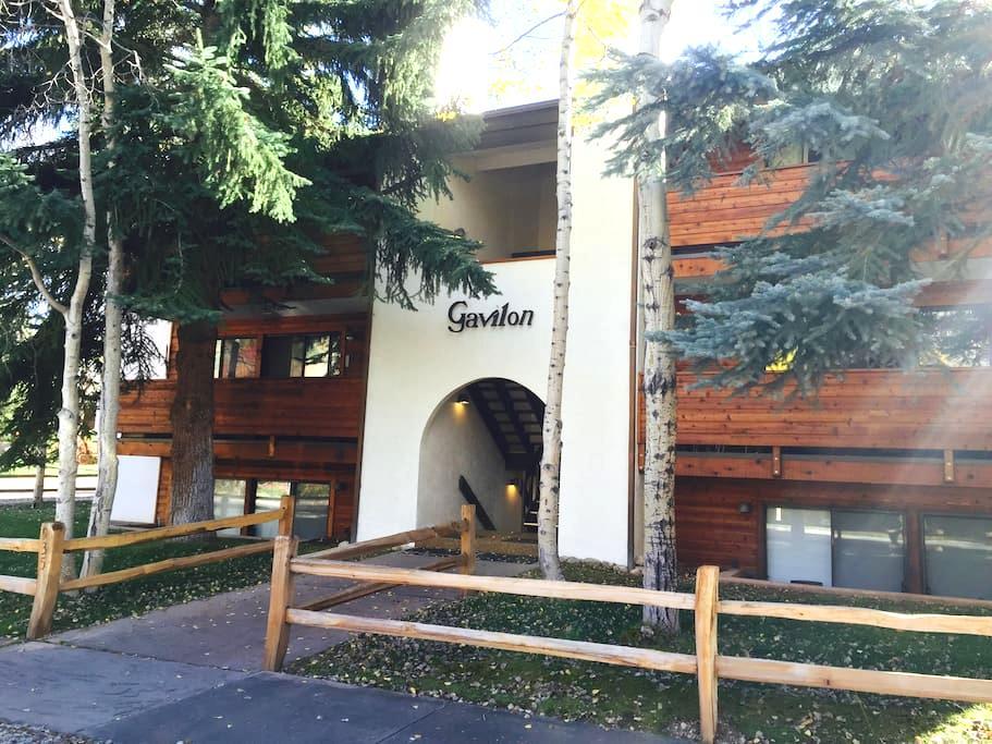 Aspen Ski Chalet Apartment - Aspen - Byt