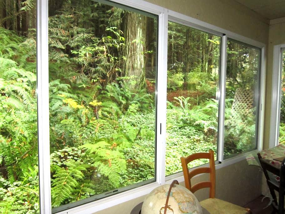 2 bdrm - Redwoods, River & Ocean - Duncans Mills - Dům