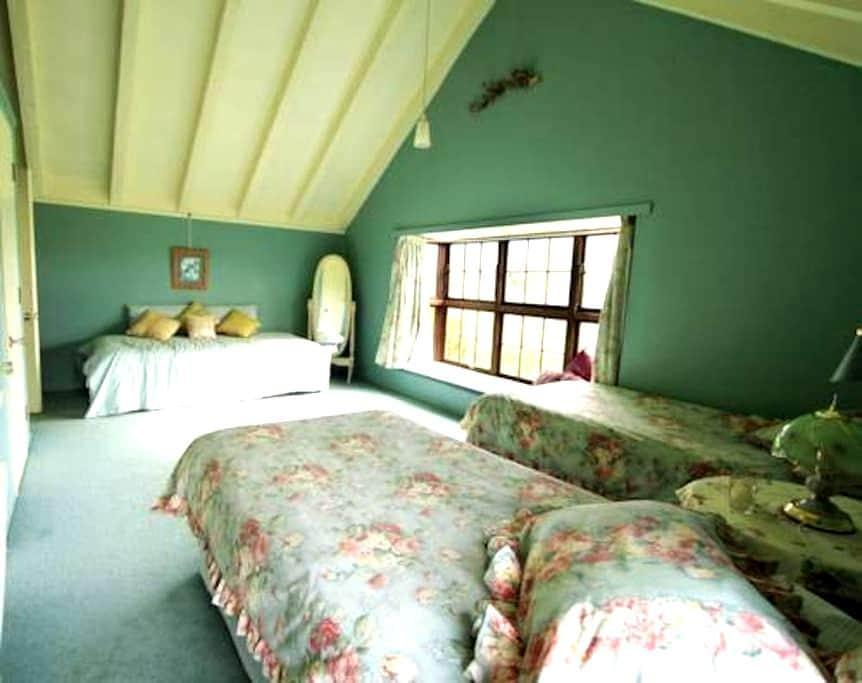 Our lovely Twin Room ! - Dunedin - Oda + Kahvaltı