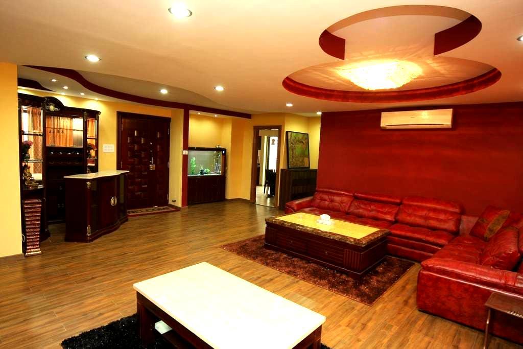 Fabulous / contemp 3BHK PentHouse - Kathmandu - Lägenhet