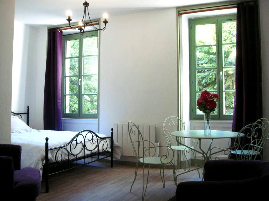 Hyper centre -Romantique1 classé*** - Périgueux - Apartmen