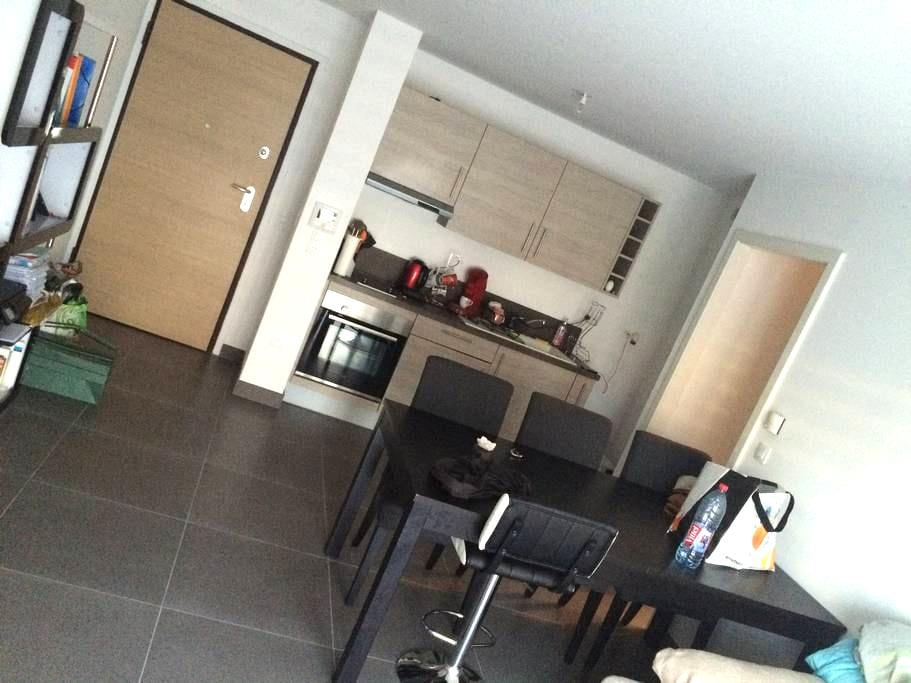 Agréable appartement T2 quartier de la Robertsau - Straatsburg - Appartement