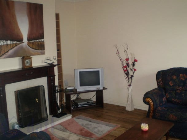 Cosy living room with new fireplace