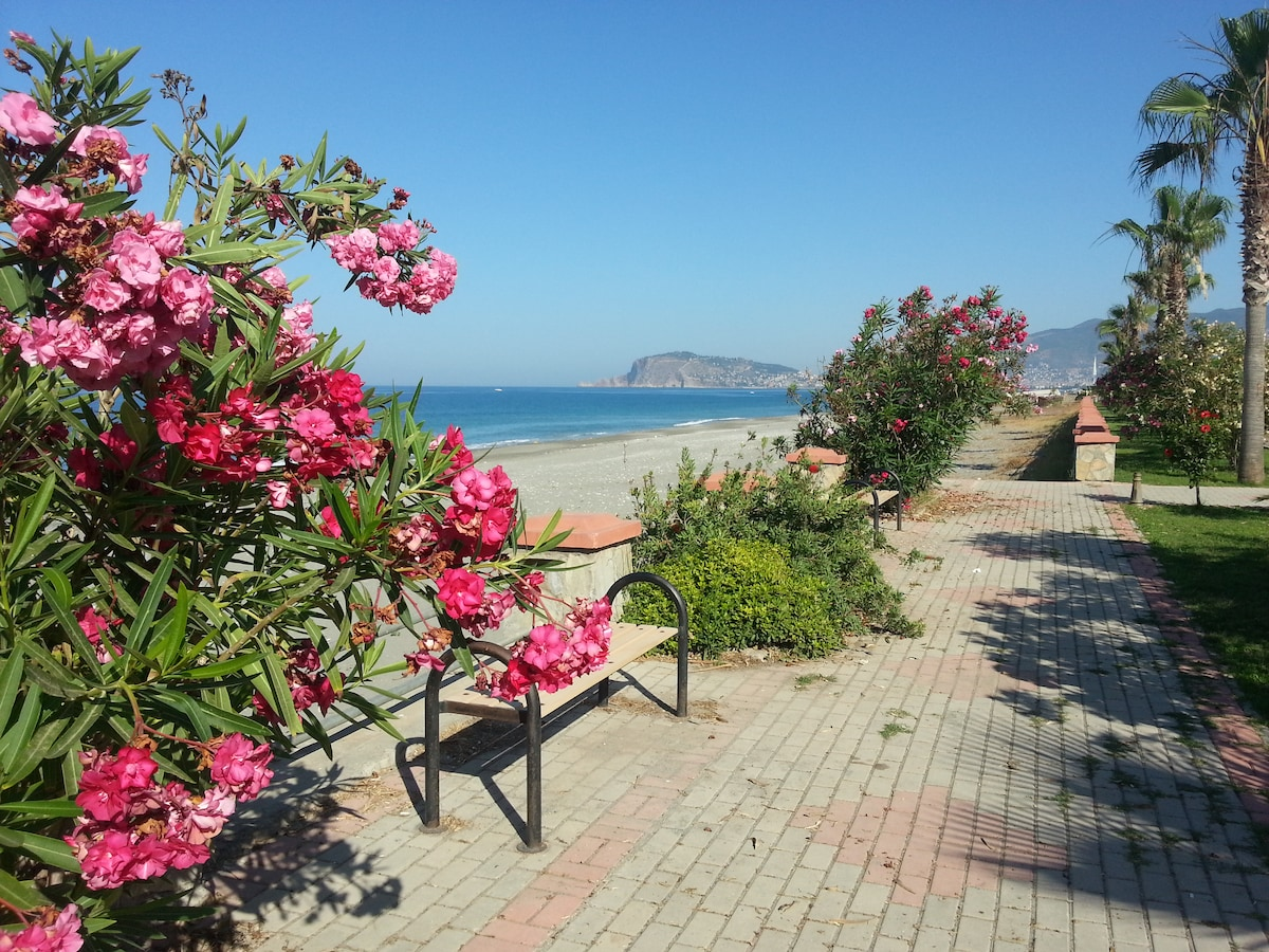 Beachfront Apartment in Alanya
