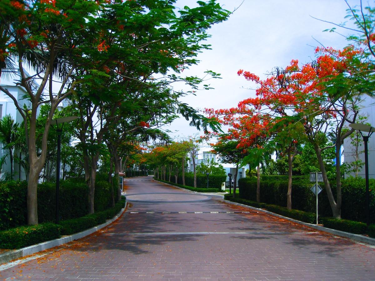 The main road to the whole compound, Villas, Sheraton Hotel and Condominium.