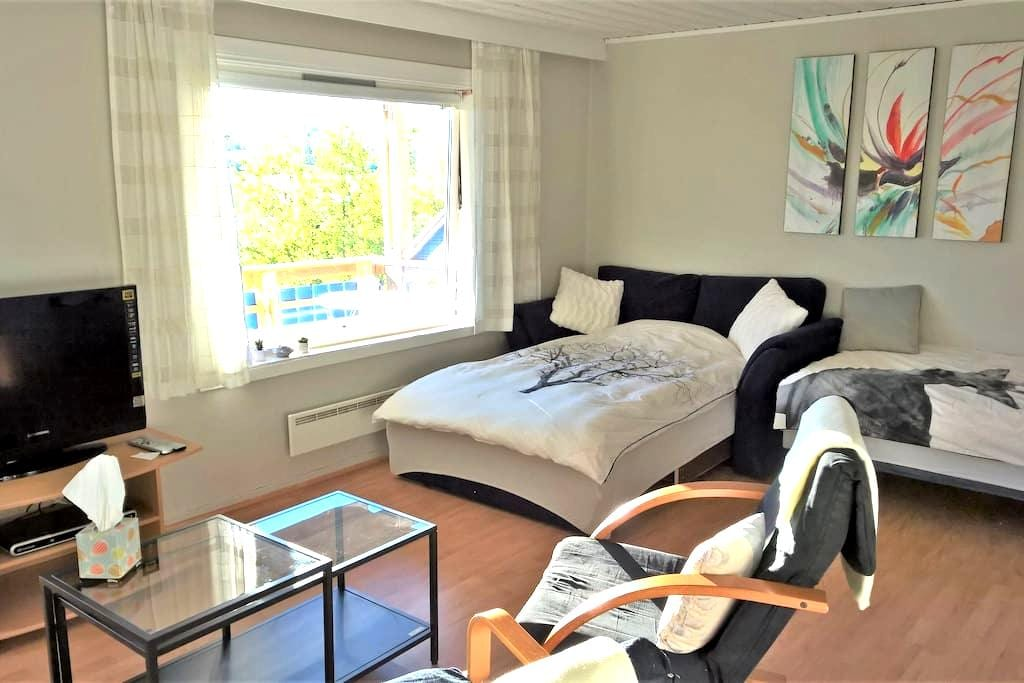 Studio apartment with balcony - Narvik - Huis