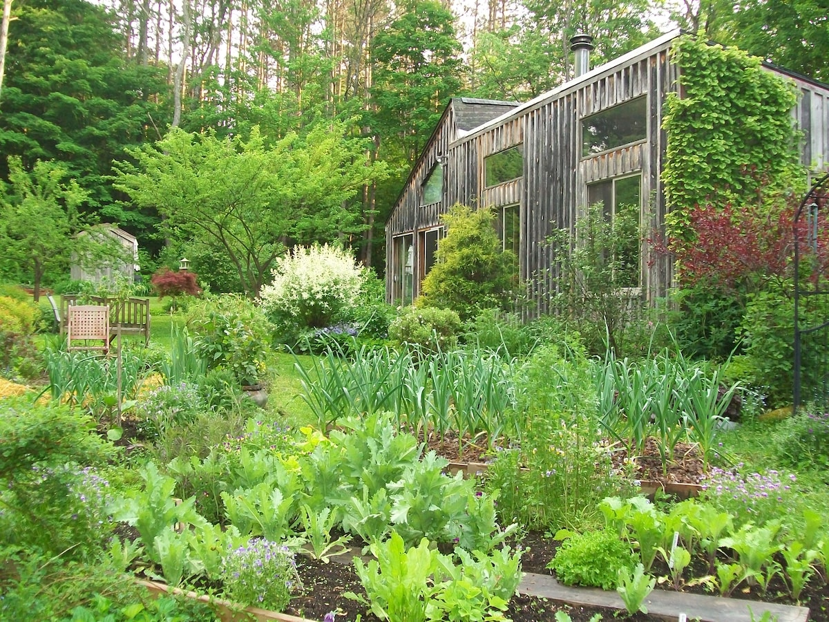 East side of Sanctuary Garden B&B in springtime. Garlic in foreground!