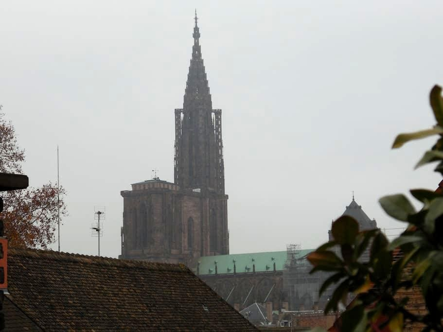 Room with a view - Strasbourg