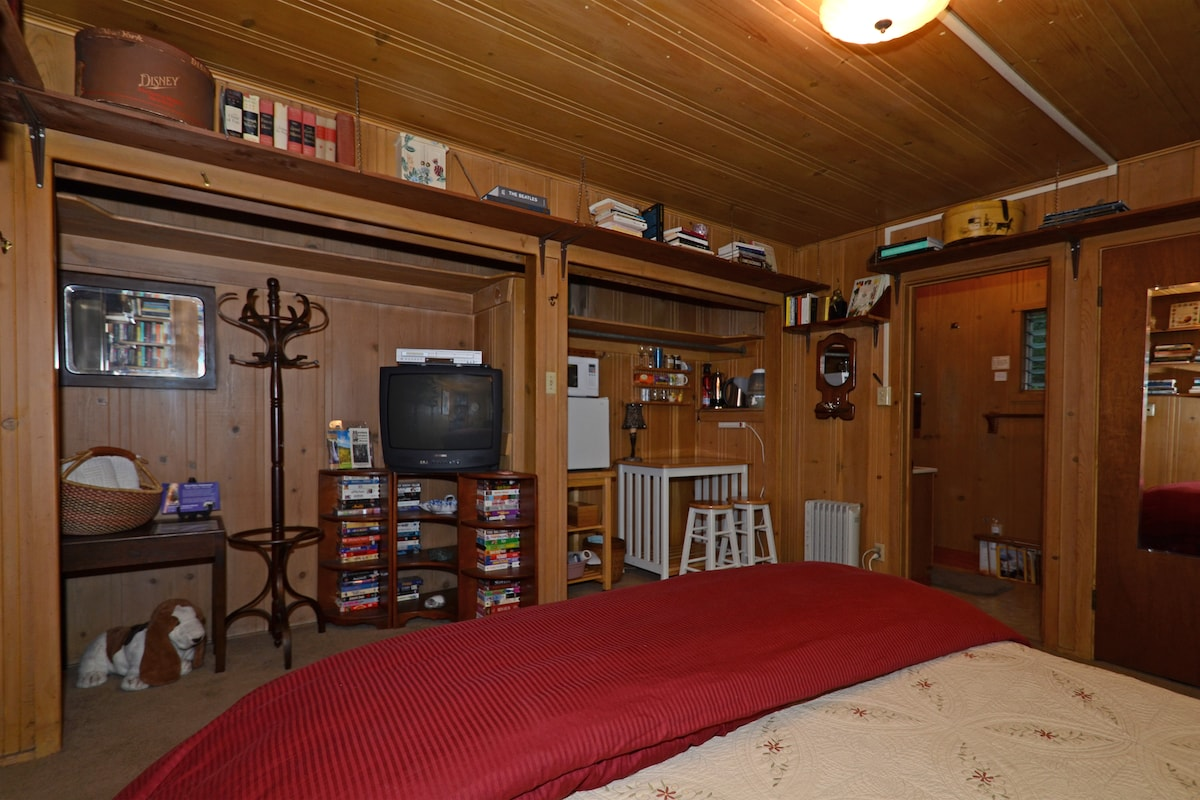 Another view of the guest room interior: movies and books galore