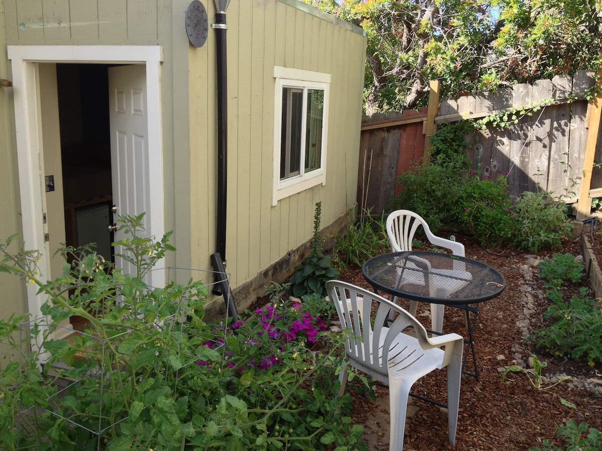 View of the garden surrounding the studio apt.