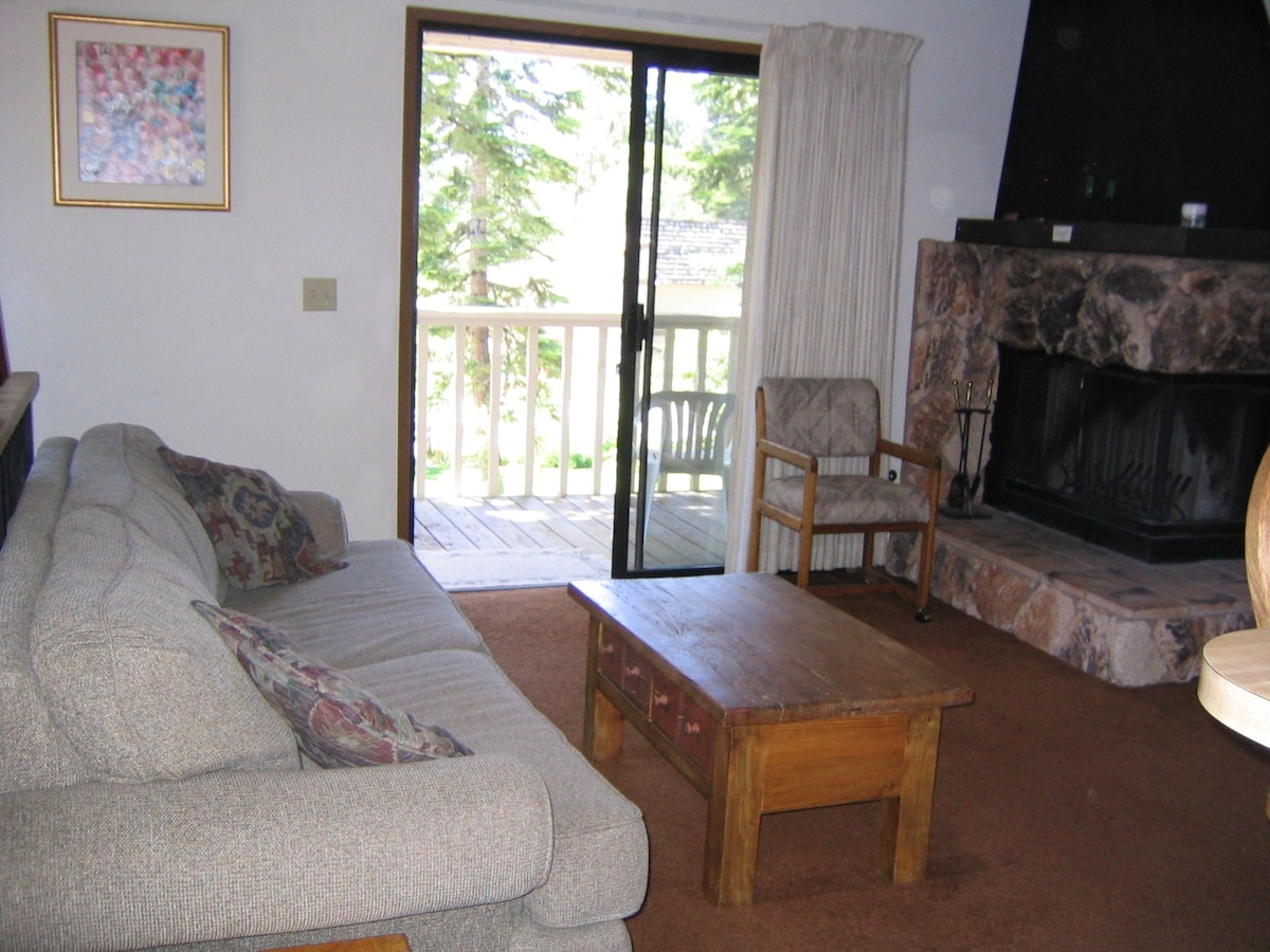 Living room:  sofa bed, fireplace and view onto deck.