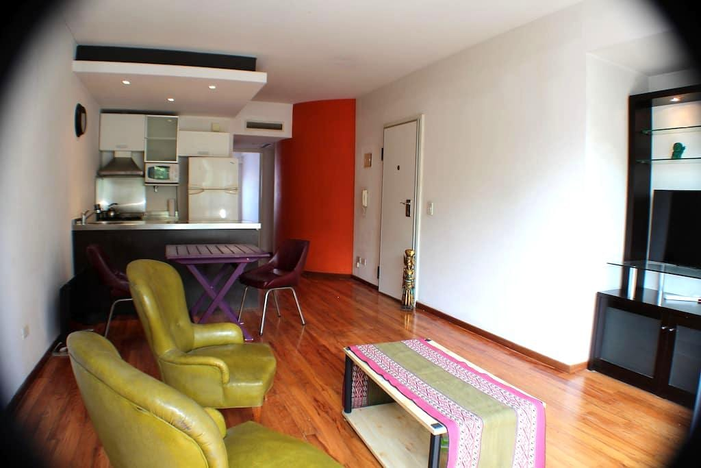 Comfortable 2-room Apartment & Studio w/Laundry - Buenos Aires