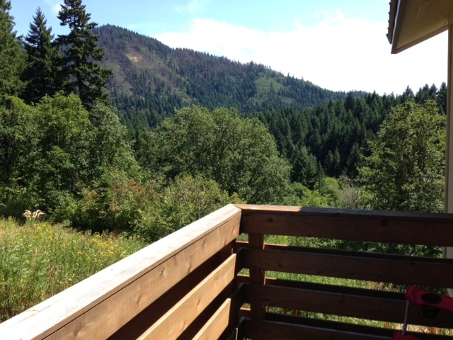 View from the deck. You can hear Big Buck Creek babbling down below.