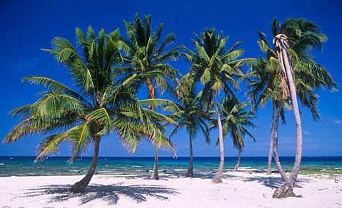 Minutes away from the pristine beach of Caye Caulker.