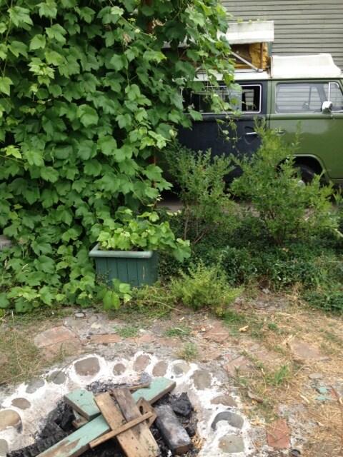 Green VW bus in the garden