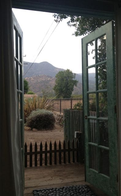 Looking out your French doors...