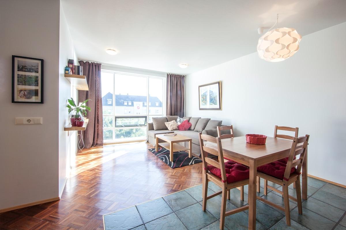 Perfect flat in central Reykjavík