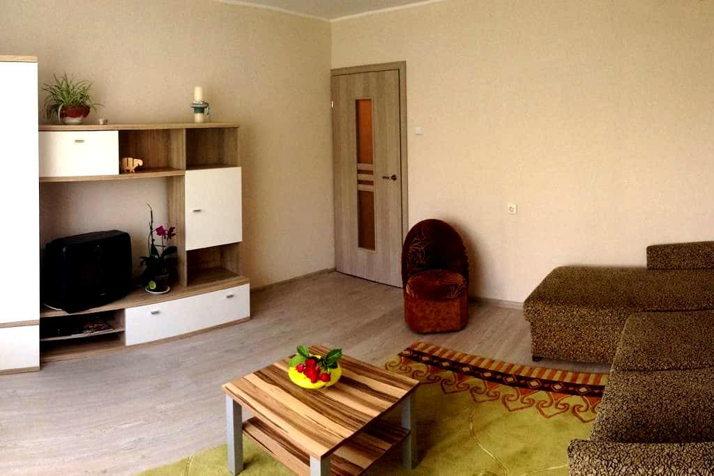 COZY 2 ROOMS APARTMENTS - Kaunas - Wohnung