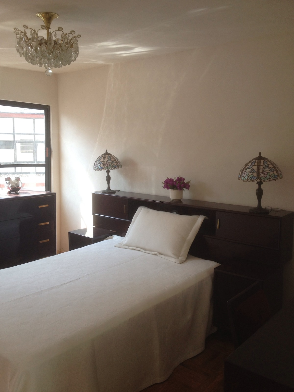 ♥ lovely coyoacan cozy apartment
