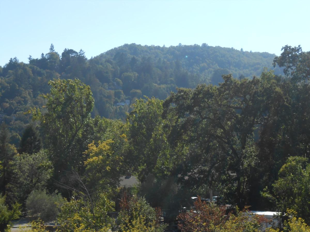 View of Mount Tam from the front door