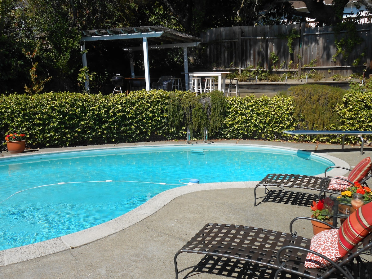 The pool! Perfect for sun bathing and a refreshing dip!