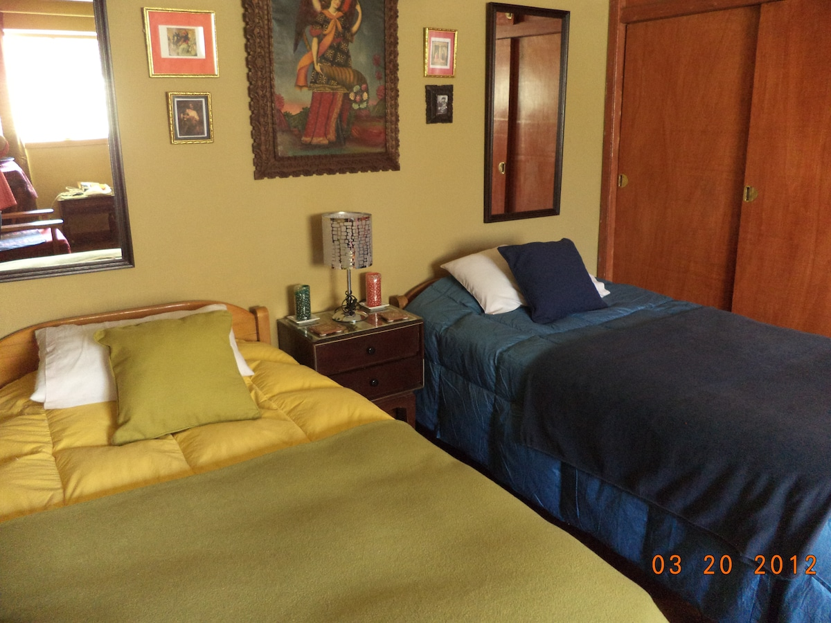 Twin beds and closet on the right.