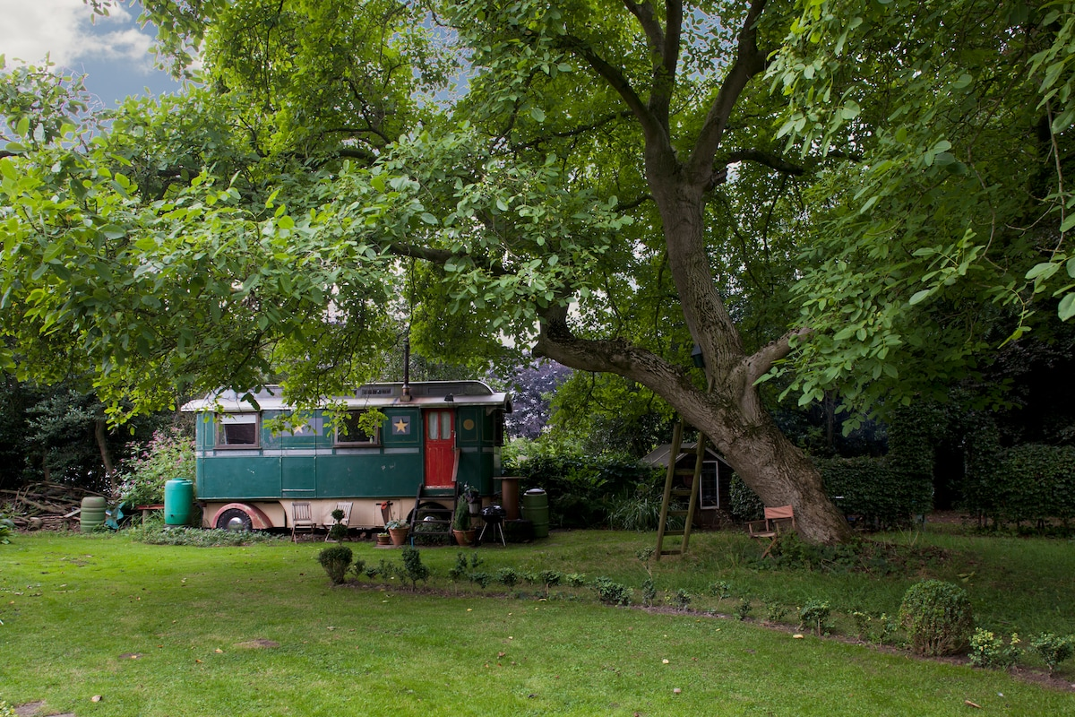 showmans caravan in summer