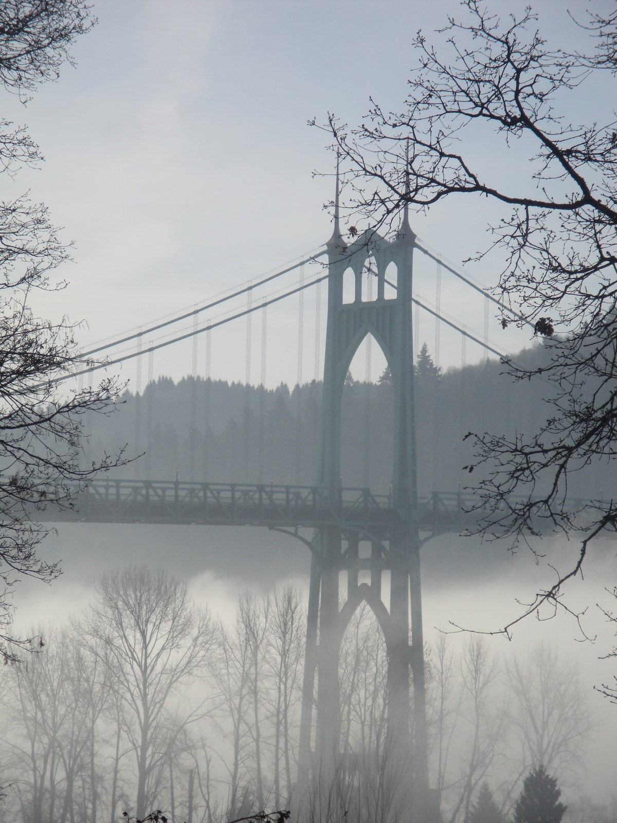 St. Johns bridgeview from the backyard