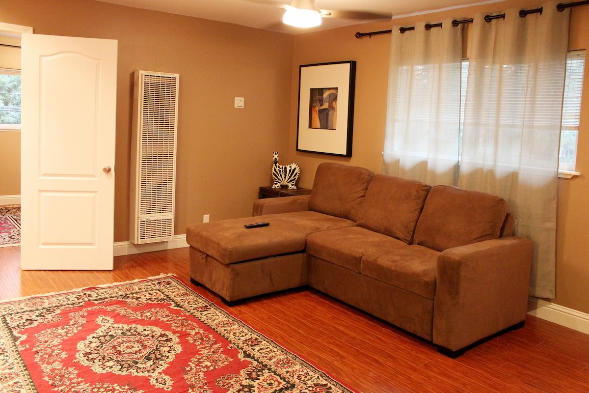 Sofa-bed in living room, could be queen size bed for your guests or kids.