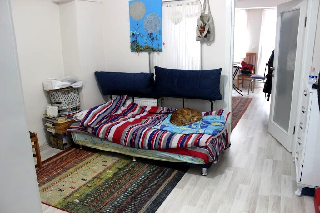 Studio Flat / In the Center of The City - Çanakkale Merkez - Apartment