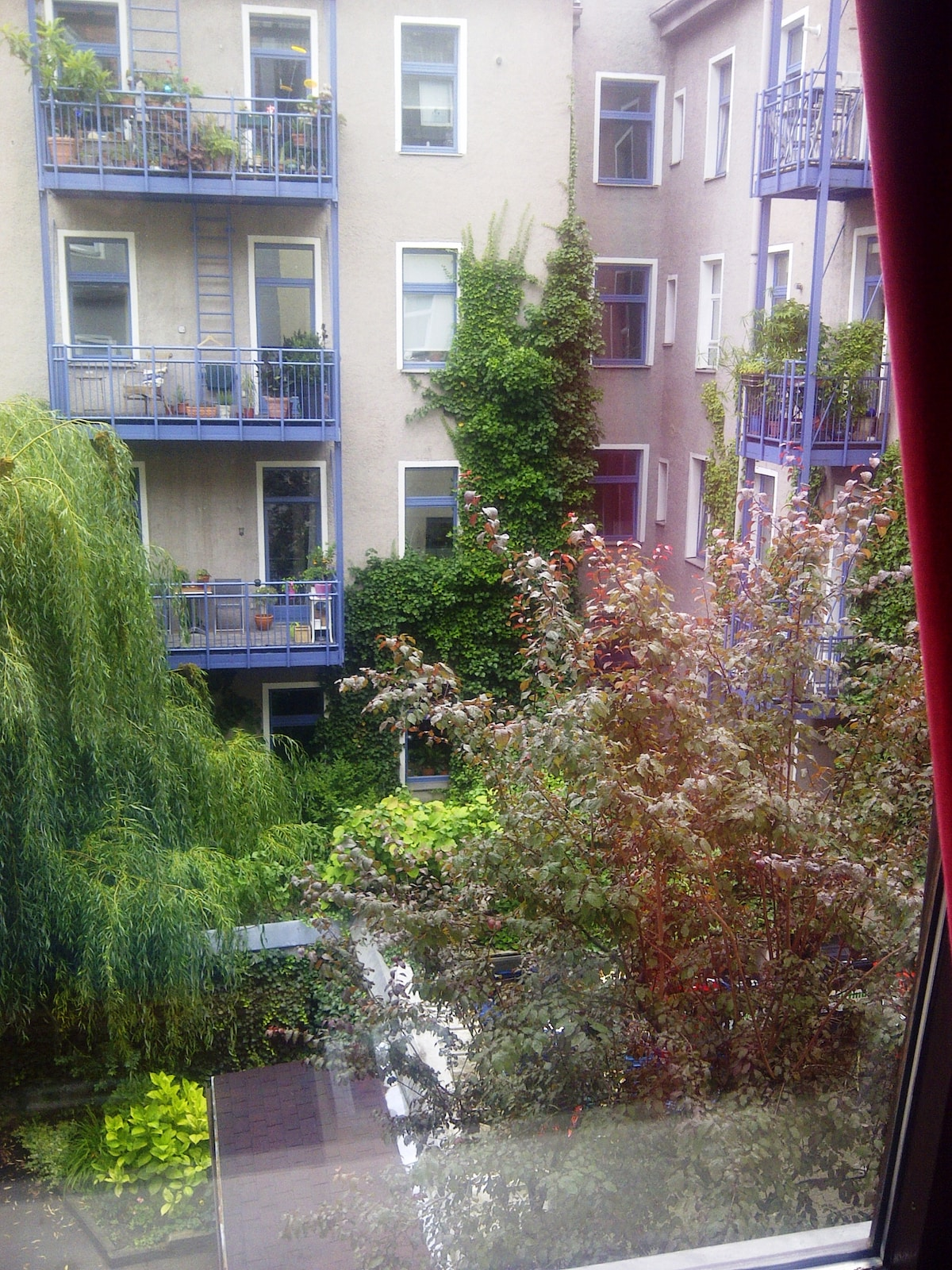 View from the room's window onto the quiet courtyard. It is so quiet, you can sleep leaving the window open.