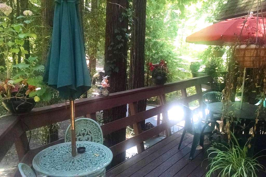 Chalet Apt. in Santa Cruz Mountains - Los Gatos - Apartment
