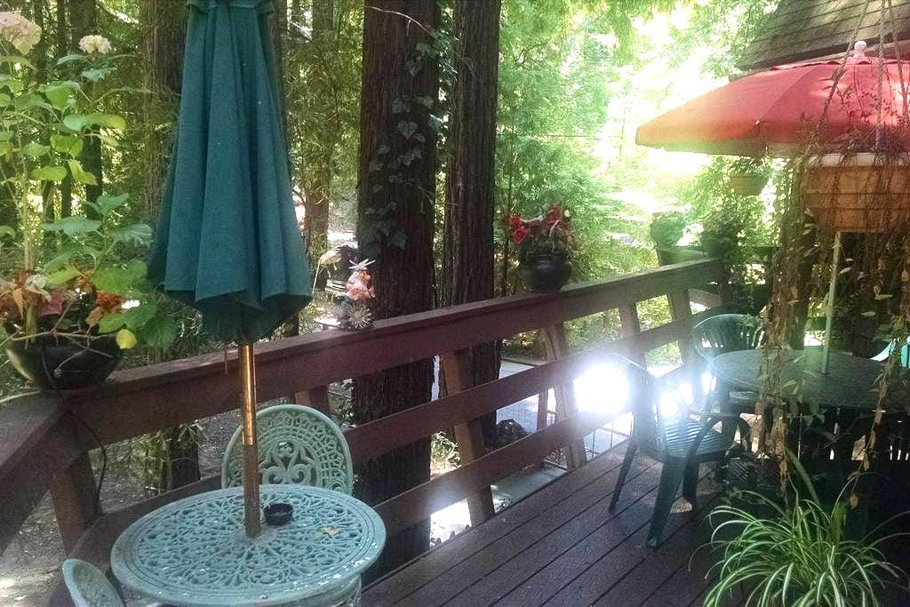Chalet Apt. in Santa Cruz Mountains - Los Gatos - Apartamento