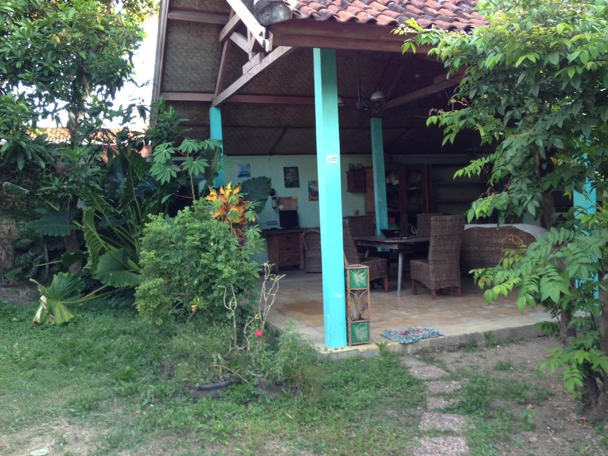 Leafy tropical garden surroundings