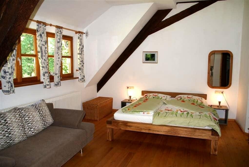 Apartment in traditional farm house - Schenkenzell - Apartamento