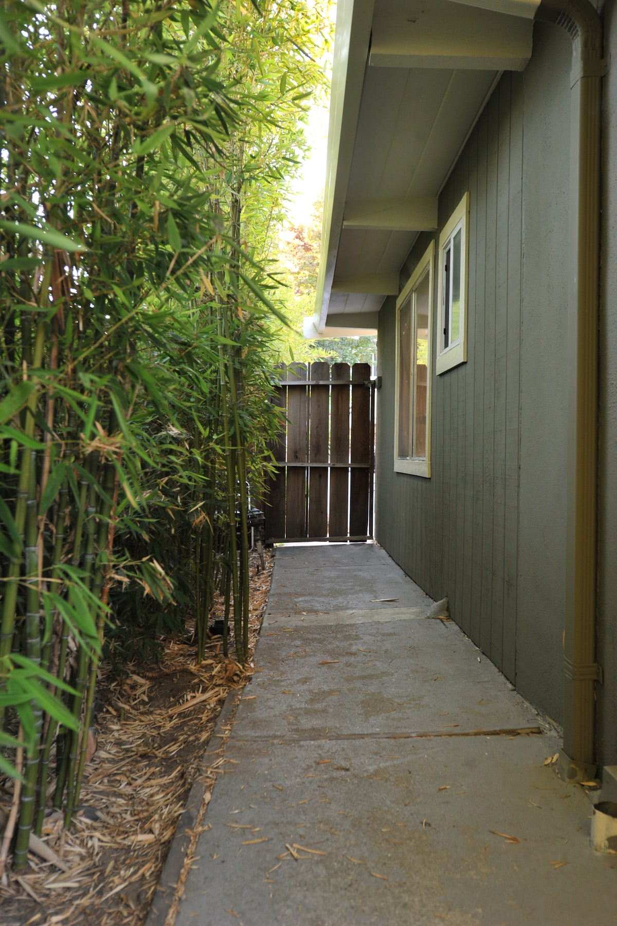 Private lighted entrance to your room through the bamboo garden.