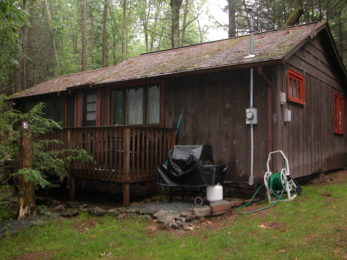Exterior, nestled in the woods