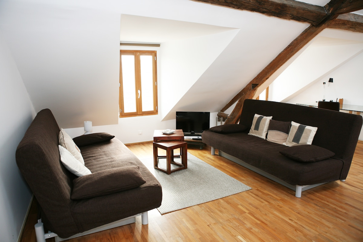 Living room with 2 double sofa beds, cable TV and DVD player     Special discount of 20% discount to a limited number of guests! Request a discount at: sebastienparis11@óutlóok.cóm, just type the address manual without any dots.