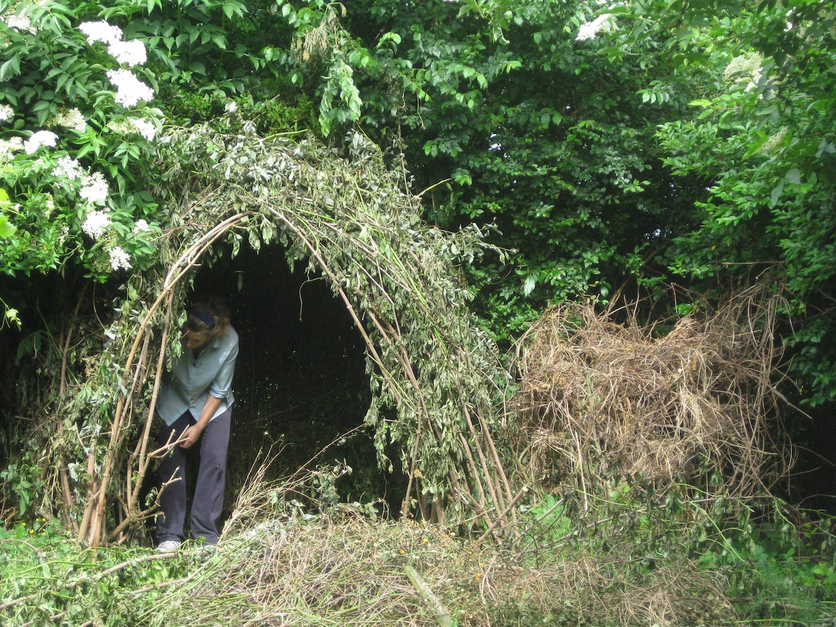 Since my cosy tipi is mostly rented out to spiders I'm delighted to invite you into my home :)