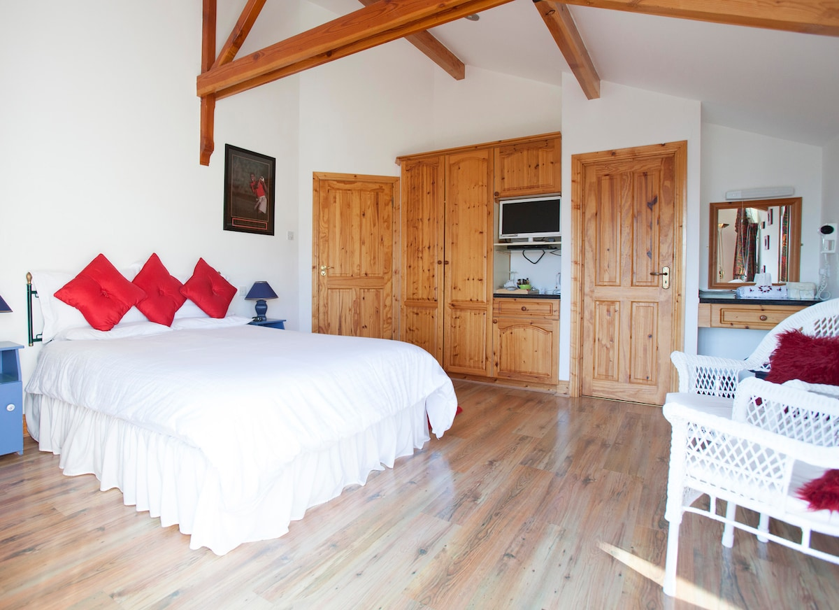 Amazing Mountain View King Room