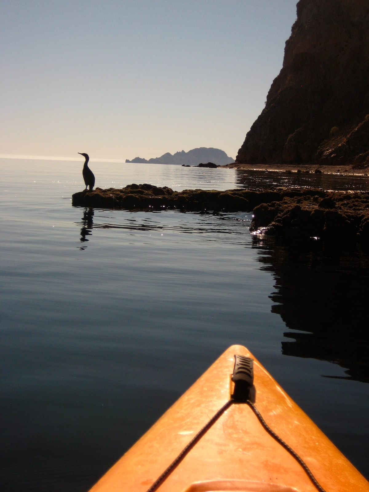 Kayaking along our shore to Nopolo Rock, 5 minutes away!