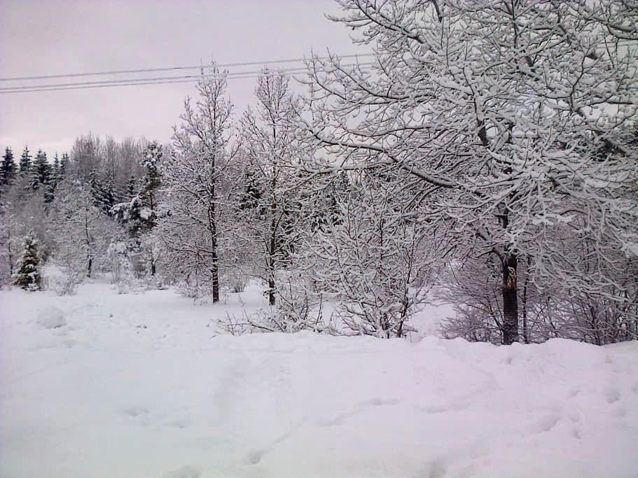 Flat in idyllic location - Prillimäe - Departamento