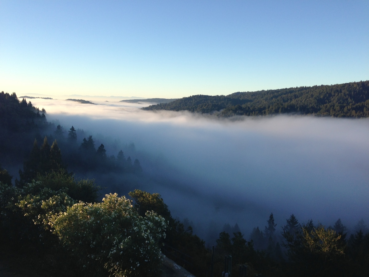 The magic of being above the morning clouds!
