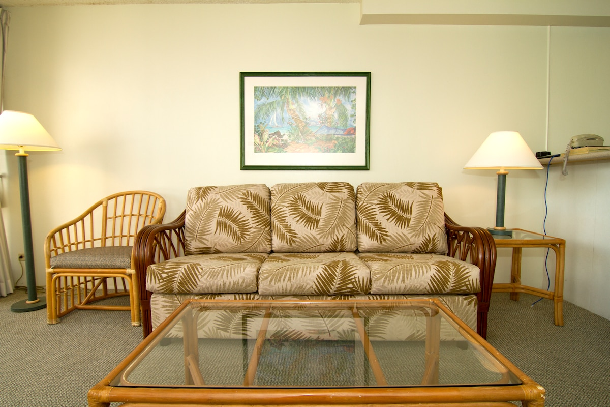 Queen size sofabed in living room(Brand new!)