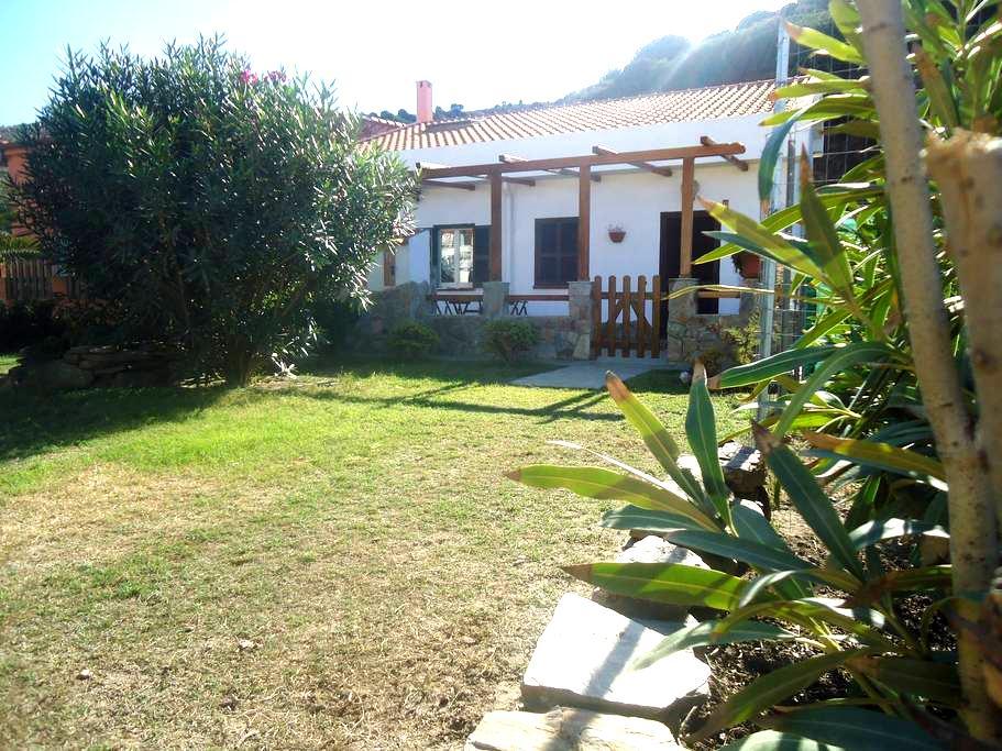 Deliziosa casa a due passi dal mare - Argentiera - บ้าน