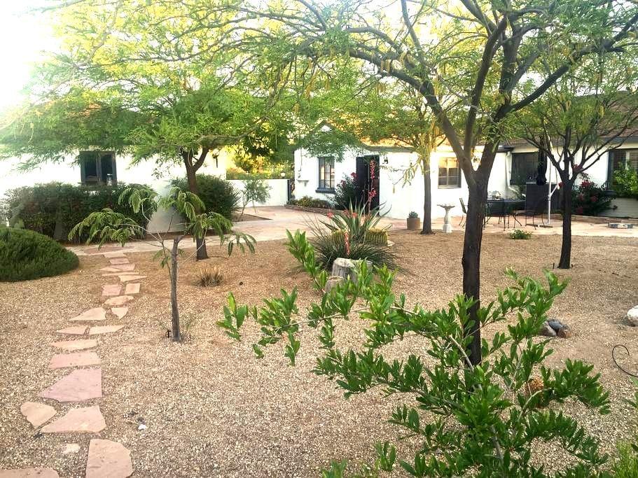 The White Dove - Tucson - Haus
