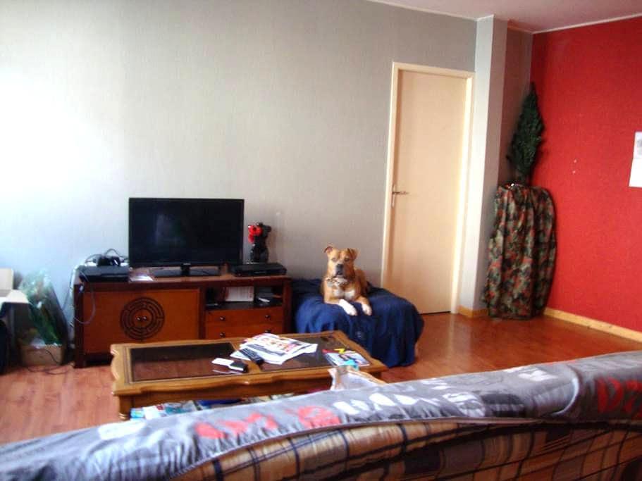 petit appartement centre ville - Baume-les-Dames - 公寓