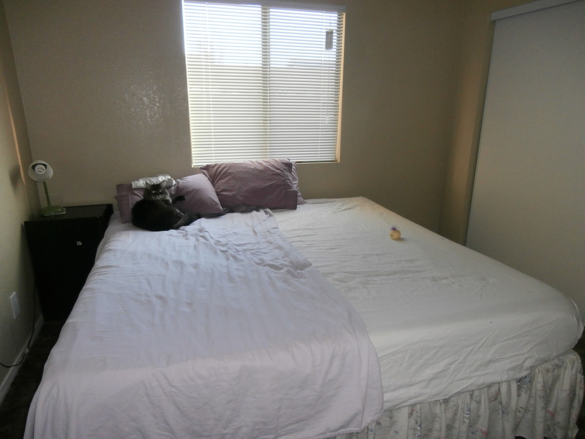 Guest bedroom with king bed and switchable lights